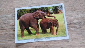Postkarten-Geschichte - Der kleine Elefant Sam